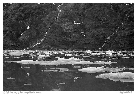 Icebergs and waterfalls, West arm. Glacier Bay National Park (black and white)