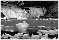 Mc Bride glacier. Glacier Bay National Park, Alaska, USA. (black and white)