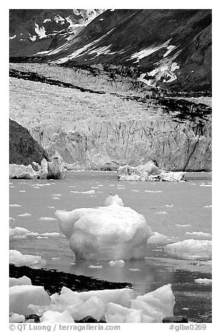 Mc Bride glacier. Glacier Bay National Park (black and white)