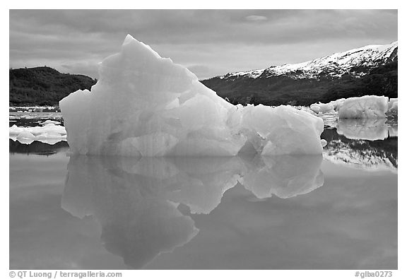 Blue iceberg, Mc Bride inlet. Glacier Bay National Park (black and white)