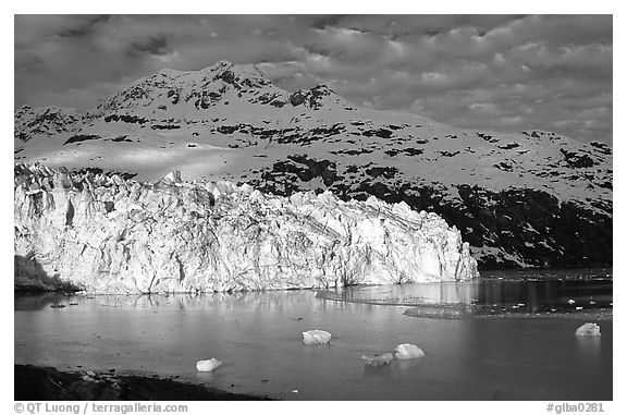 Lamplugh tidewater glacier and Mt Cooper. Glacier Bay National Park (black and white)