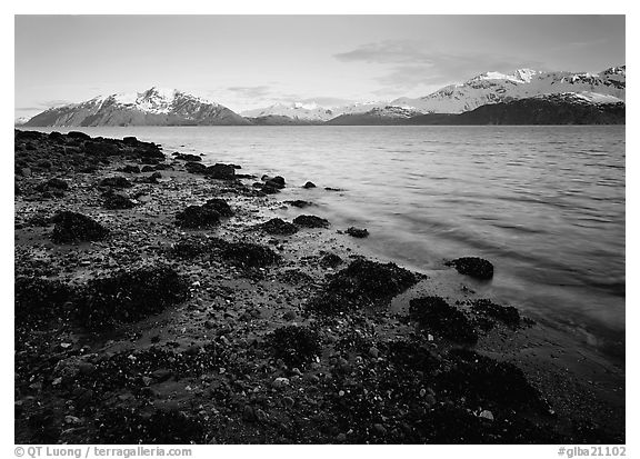 West Arm, sunset. Glacier Bay National Park (black and white)