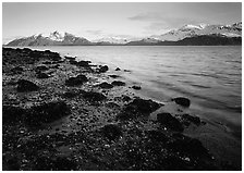 West Arm, sunset. Glacier Bay National Park ( black and white)