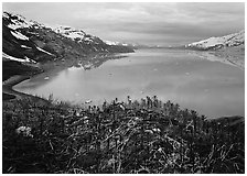West arm seen from the entrance of John Hopkins inlet. Glacier Bay National Park ( black and white)