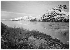Snowy mountains and icy fjord seen from high point, West Arm. Glacier Bay National Park ( black and white)