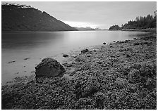 Charpentier inlet. Glacier Bay National Park, Alaska, USA. (black and white)