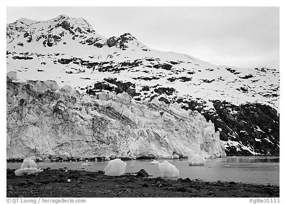Lamplugh glacier and Mt Cooper. Glacier Bay National Park (black and white)