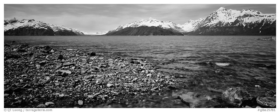 Snowy mountains rising above water. Glacier Bay National Park (black and white)