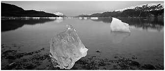 Transluscent iceberg at dawn. Glacier Bay National Park (Panoramic black and white)