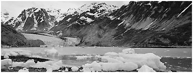 Coastal scenery with icebergs and tidewater glacier. Glacier Bay National Park (Panoramic black and white)