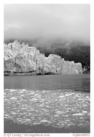 Icebergs, Margerie Glacier, and fog. Glacier Bay National Park (black and white)