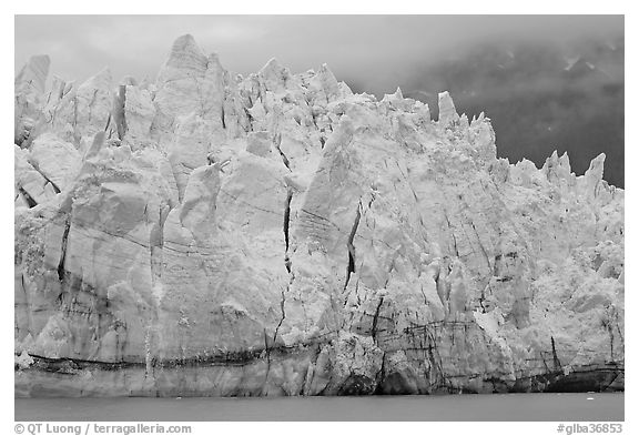 Blue ice on the tidewater terminus of Margerie Glacier. Glacier Bay National Park (black and white)