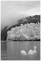 Icerberg at the base of Margerie Glacier. Glacier Bay National Park, Alaska, USA. (black and white)