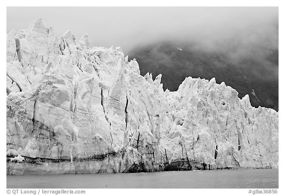Front of Margerie Glacier in foggy weather. Glacier Bay National Park (black and white)