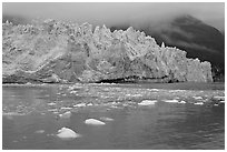 Icebergs and blue ice face of Margerie Glacier. Glacier Bay National Park, Alaska, USA. (black and white)