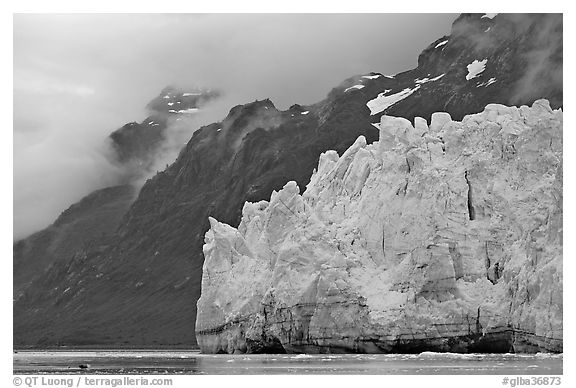Terminal front of Margerie Glacier with blue ice. Glacier Bay National Park (black and white)