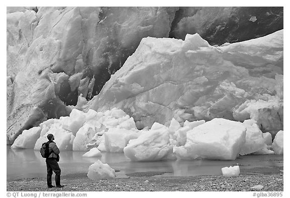 Hiker looking at ice wall at the front of Reid Glacier. Glacier Bay National Park (black and white)