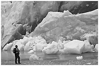 Hiker looking at ice wall at the front of Reid Glacier. Glacier Bay National Park ( black and white)