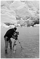 Cameraman standing in water with camera and tripod filming Reid Glacier. Glacier Bay National Park ( black and white)