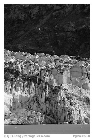 Front of Lamplugh glacier. Glacier Bay National Park (black and white)