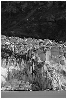 Front of Lamplugh glacier. Glacier Bay National Park, Alaska, USA. (black and white)