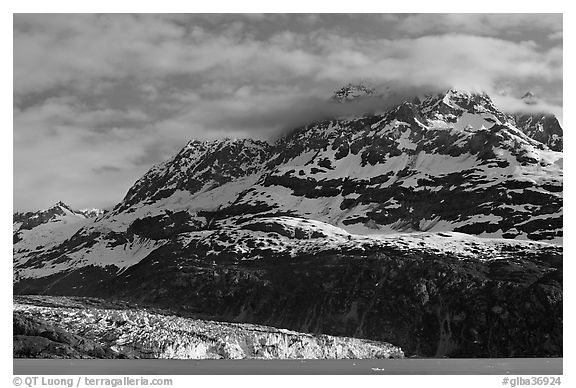 Mt Cooper and Lamplugh glacier, late afternoon. Glacier Bay National Park (black and white)