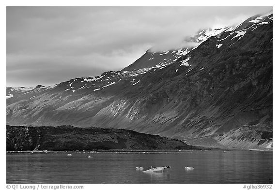 Slopes at the base of Mount Barnard illuminated by a late ray of sun. Glacier Bay National Park (black and white)