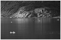 Icebergs and spot of sunlight on slopes around Tarr Inlet. Glacier Bay National Park, Alaska, USA. (black and white)