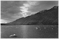 Icebergs in Tarr Inlet, sunset. Glacier Bay National Park, Alaska, USA. (black and white)