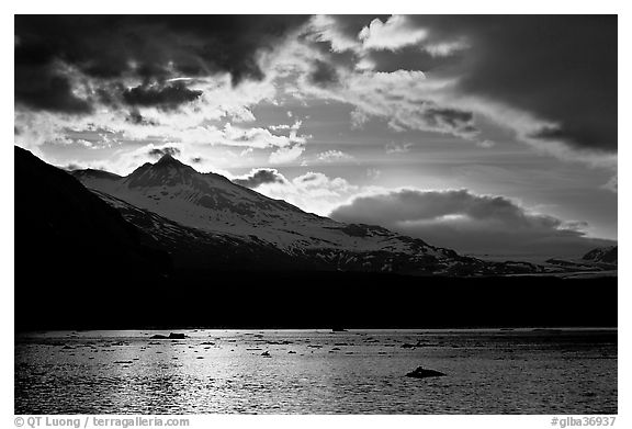 Mount Eliza and Tarr Inlet under clouds at sunset. Glacier Bay National Park (black and white)