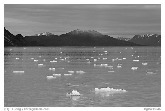 Icebergs and last light on mountain, Tarr Inlet, sunset. Glacier Bay National Park (black and white)
