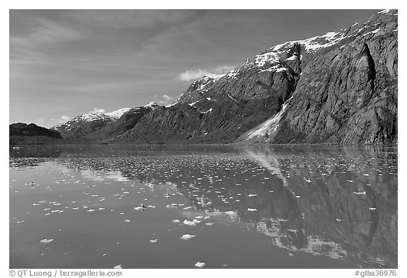 Icebergs and reflections in Tarr Inlet. Glacier Bay National Park (black and white)