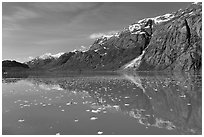 Icebergs and reflections in Tarr Inlet. Glacier Bay National Park, Alaska, USA. (black and white)