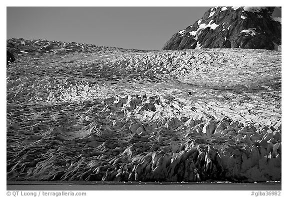Reid Glacier. Glacier Bay National Park (black and white)