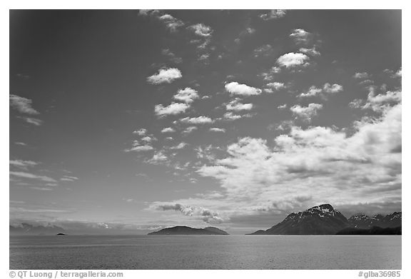 Drake Island and Francis Island. Glacier Bay National Park (black and white)