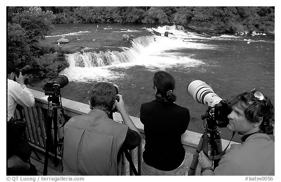 Photographers on observation platform and Brooks falls with bears. Katmai National Park (black and white)