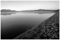Bear tracks, Naknek lake. Katmai National Park, Alaska, USA. (black and white)