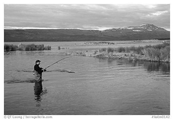 Man fishing for salmon in the Brooks river. Katmai National Park (black and white)