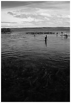 Fishermen in the Brooks river. Katmai National Park ( black and white)