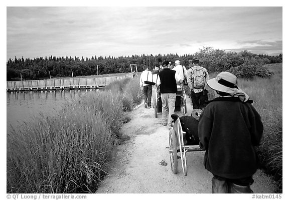 Group heading towards Brooks falls. Katmai National Park (black and white)