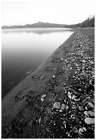 Bear tracks on the shore of Naknek lake. Katmai National Park ( black and white)