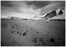 Rare plants growing out of the ash of Valley of Ten Thousand smokes. Katmai National Park ( black and white)