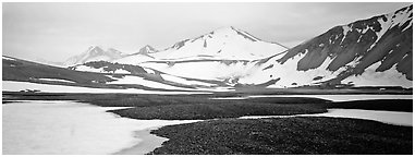 Lichens, snow patches, and snowy peaks. Katmai National Park (Panoramic black and white)