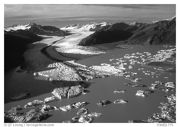 Aerial view of the front of Bear Glacier. Kenai Fjords National Park (black and white)