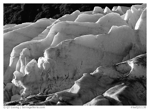 Exit Glacier. Kenai Fjords National Park (black and white)