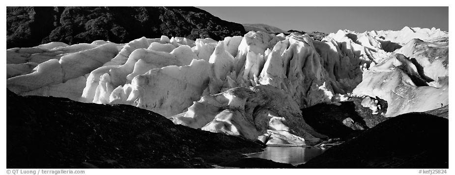 Glacier landscape. Kenai Fjords  National Park (black and white)