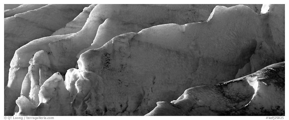 Ice fins on Exit Glacier. Kenai Fjords National Park (black and white)