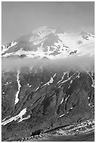 Glacier, and cloud hanging at mid-height of peak. Kenai Fjords National Park ( black and white)