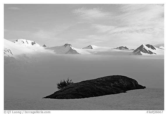 Patch of grass emerging from snow cover and mountains. Kenai Fjords National Park, Alaska, USA.
