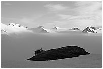 Patch of grass emerging from snow cover and mountains. Kenai Fjords National Park, Alaska, USA. (black and white)
